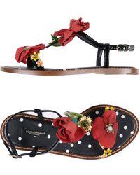 Dolce & Gabbana Sandali - Nero