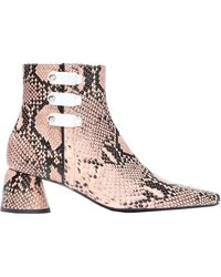 Ellery Ankle Boots - Multicolour