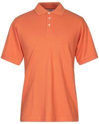 HARDY CROBB'S Polo Shirt - Orange