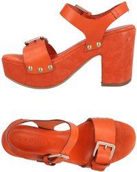 Fiorina Sandals - Orange