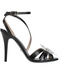 Class Roberto Cavalli Sandals - Black