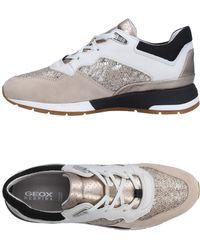 Geox Sneakers & Deportivas - Neutro
