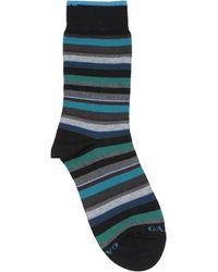 Gallo Socks & Hosiery - Black