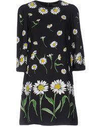 Dolce & Gabbana Chamomile Viscose Stretch Dress Black Dr1038