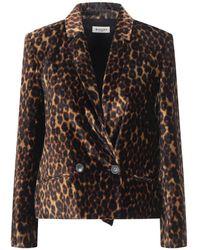 MASSCOB Suit Jacket - Brown