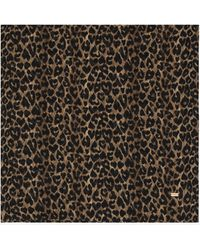 Saint Laurent Large Square Scarf In Heart Leopard-print Wool Twill - Natural