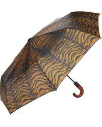 Patricia Nash Magliano Umbrella - Blue