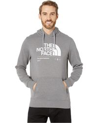 160d2971c The North Face Bearitage Hoodie in Brown for Men - Lyst