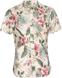 Nifty Genius Truman Button Collar In Hawaiian Print - Natural