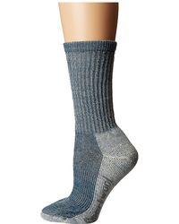 Smartwool - Hike Light Crew (lochness) Women's Crew Cut Socks Shoes - Lyst