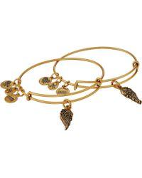 "ALEX AND ANI ""path Of Symbols"" Wings Set Of 2 Gold Expandable Wire Bangle Charm Bracelet - Metallic"