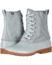 Native Shoes Jimmy Citylite - Gray