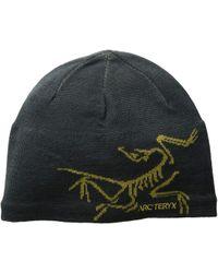 Arc'teryx - Bird Head Toque (orion/olive Amber) Beanies - Lyst