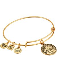ALEX AND ANI - Charity By Design - Power Of Unity Bracelet - Lyst