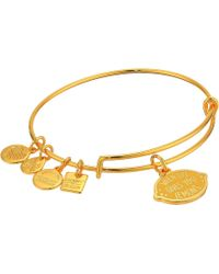 ALEX AND ANI - Charity By Design When Life Gives You Lemons Bangle (shiny Gold) Bracelet - Lyst