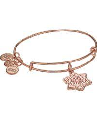 ALEX AND ANI - The Sacral Chakra Bangle (shiny Rose) Bracelet - Lyst