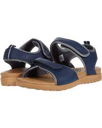 Acorn Everywear Grafton Sandal - Multicolor
