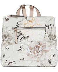Fiorelli Finley Small Backpack - Multicolor
