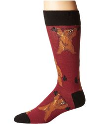 Socksmith - Bearbell - Lyst