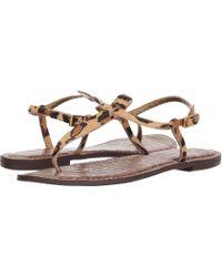 f7d85e1ddae1 Sam Edelman - Gigi (dusty Rose Royal Snake Print Goat Leather) Women s  Sandals -