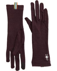 Smartwool Merino 250 Gloves - Purple
