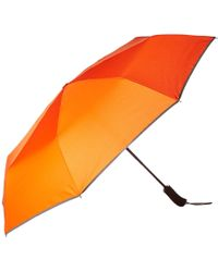 Swims Umbrella Short - Orange