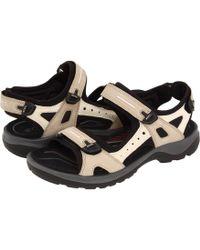 Ecco Yucatan (off Road) Ladies Sandals - Black