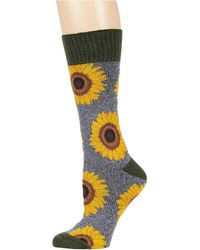 Socksmith Sincerely Sunflowers - Gray