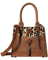 STS Ranchwear - Chaps Purse (leopard/tornado Brown) Wallet Handbags - Lyst