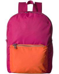 State Bags Lorimier Mini Color - Block Backpack - Pink