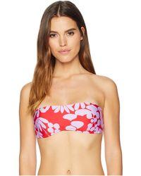 373110cbf6af3 Trina Turk - Bali Blossoms Bandeau Top (midnight) Women's Swimwear - Lyst