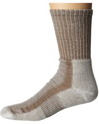 Thorlo - Light Hiking Crew Single Pair Crew Cut Socks Shoes - Lyst