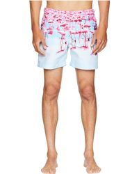 Orlebar Brown - Bulldog Photographic Flamingos Swim Shorts (flocking About) Men's Swimwear - Lyst