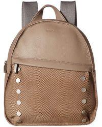 Hammitt Shane Large (black) Handbags - Multicolor