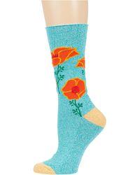 Socksmith California Poppies - Blue