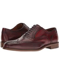 Massimo Matteo 6-eye Wing Tip Lace Up Wing Tip Shoes - Multicolor