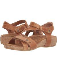 Taos Footwear Universe - Brown