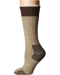 ce36475548 Carhartt - Heavyweight Merino Wool Blend Boot Sock (heather Gray) Women's  Crew Cut Socks