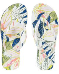 Vera Bradley Beach Flip-flops - Green