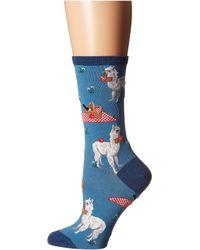 Socksmith Alpaca Lunch - Blue