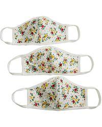 Shashi Daisy Face Mask Set - Multicolor