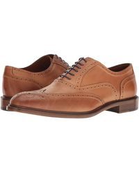 Massimo Matteo 6-eye Wing Tip Lace Up Wing Tip Shoes - Brown