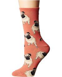 Socksmith Pugs - Orange