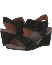 Taos Footwear High Society - Black