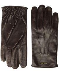 COACH Tech Napa Gloves - Multicolor