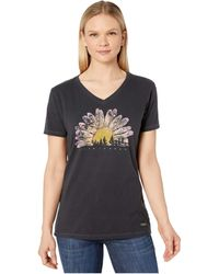 Life Is Good. Watercolor Daisy Camp Crusher Vee - Black