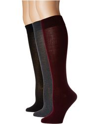 Steve Madden 3-pack Solid Classic Knee High (red Wine/grey/black) Women's Knee High Socks Shoes