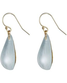 Dew Drop Earring You Might Also Like
