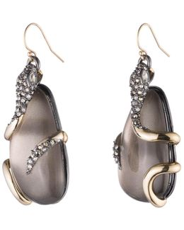 Snake Wrapped Lucite Drop Wire Earring You Might Also Like