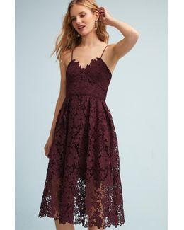 Renata Lace Dress